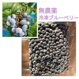 北海道産 無農薬 冷凍 ブルーベリー 1キロ(フルーツ)