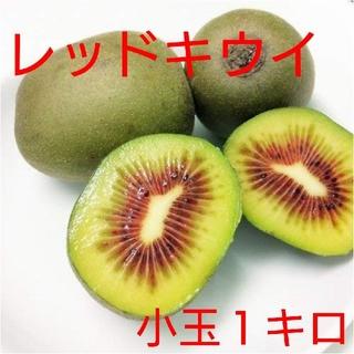 かおりん様専用 レッドキウイ1キロ&グリーンキウイ1キロ(フルーツ)
