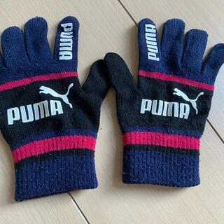 プーマ(PUMA)のPUMA 手袋 16センチ(手袋)