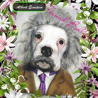 フランフラン(Francfranc)の新品 フレンチブルドッグ アインシュタイン クッションカバー◆あまりに可愛い過ぎ(犬)
