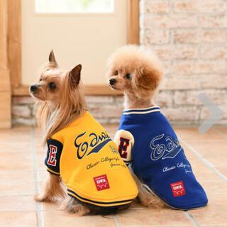 エドウィン(EDWIN)の新品 犬服 EDWIN(エドウィン)スタジャン ペットウェア(犬)