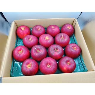 青森or岩手県産 ジョナゴールド 13-16玉 約5kg(フルーツ)