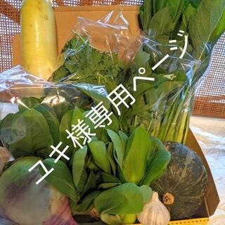 ユキ様専用ページ(野菜)