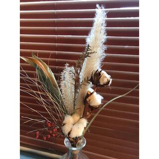 冬 クリスマス イメージ ふわふわ&キラキラ花材セット コットンフラワー(ドライフラワー)