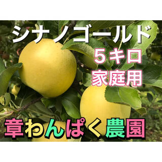 シナノゴールド  家庭用 5キロ 長野県産 減農薬 化学肥料不使用(フルーツ)