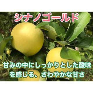 シナノゴールド  家庭用 10キロ 長野県産 減農薬 化学肥料不使用(フルーツ)