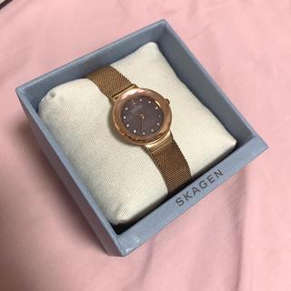 スカーゲン(SKAGEN)のスカーゲン レディース 時計【箱付き】(腕時計)