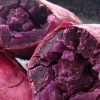 5キロ無農薬紫芋(野菜)