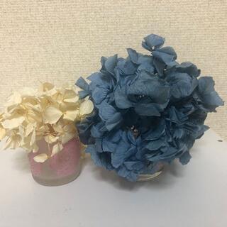 お値下げ☆紫陽花(あじさい) ドライフラワー5色セット(ドライフラワー)