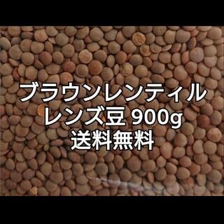 レンズ豆900g/Brown Lentil 乾燥豆(米/穀物)