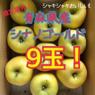 お得❗️青森県産シナノゴールド❗️A級ハネ大玉9玉❗️(フルーツ)