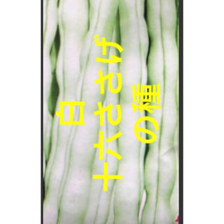 野菜種  白十六ささげ 野菜種  20個(野菜)