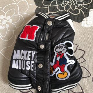 ディズニー(Disney)のペットパラダイス ミッキーマウス ジャンパー(ペット服/アクセサリー)