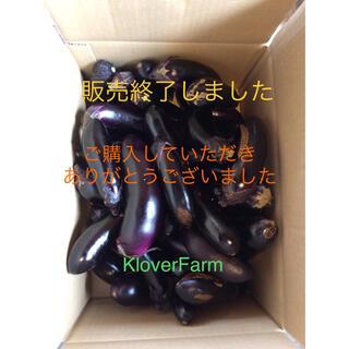 2020年 群馬県産なすをご購入いただきました皆様へ Klover Farm(野菜)