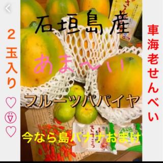 石垣島産高級フルーツパパイヤ(フルーツ)