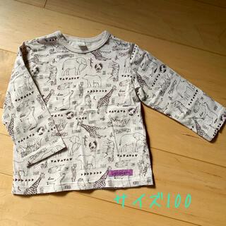 キムラタン(キムラタン)の男の子長袖Tシャツ(Tシャツ/カットソー)