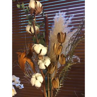 ロング ナチュラル スワッグ 花材 コットンフラワーとウバウリ パンパスグラス(ドライフラワー)