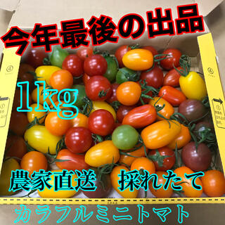 今年もありがとうセール価格!        1キロ(宅急便コンパクト)(野菜)