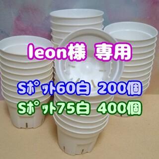【スリット鉢】Sポット丸型75白400個 他 プレステラ 多肉植物(プランター)