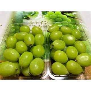 ◆岡山産 晴王◆シャインマスカット◆朝摘◆送料無料(野菜)