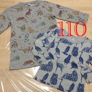 グラニフ(Design Tshirts Store graniph)のgraniph 動物柄 長袖 110(ワンピース)