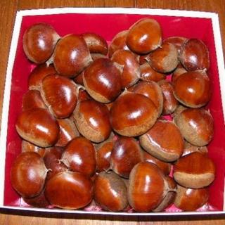 栗 大粒 2~3Lサイズ 1.8k 取り扱いの難しい無燻蒸で熟成させた生栗(フルーツ)