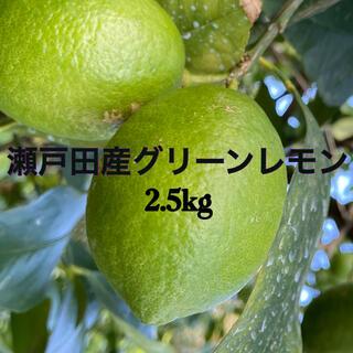 瀬戸田産グリーンレモン2.5キロ(フルーツ)