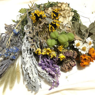 [お値下げ]花材お得パック 15種類 花材 素材 ナチュラル  C(ドライフラワー)