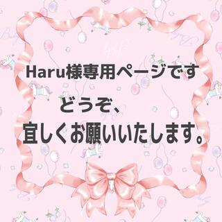 Haru様専用ページです。(その他)