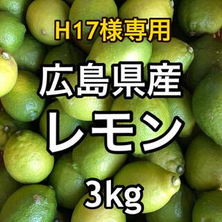 ★H17様専用★ オーガニックレモン 広島県産 大崎上島産 3kg(フルーツ)