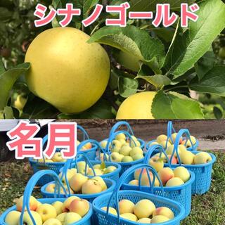 シナノゴールド と名月 家庭用 合計3キロ 長野県産 減農薬(フルーツ)