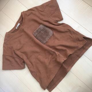 ローズバッド(ROSE BUD)のローズバッド ファーtシャツ スウェットtシャツ(Tシャツ(半袖/袖なし))