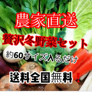 残りわずか❗️農家直送たっぷり冬野菜詰め合わせ約60サイズ入るだけ送料無料‼️(野菜)