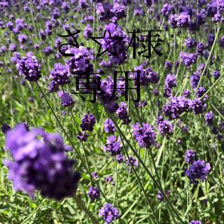 マザウェイズ(motherways)の新品 マザウェイズ フォーマルシューズ 20 ブラック 黒 花 バラ 薔薇(フォーマルシューズ)