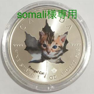 【somali様専用】メイプル子猫 第4貨ベンガル 1オンス銀貨カラー(貨幣)