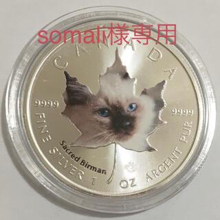 【somali様専用】メイプル子猫 第5貨バーマン 1オンス銀貨カラー(貨幣)