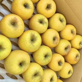 本日限定値下げ!りんごシナノゴールド 5kg 送料無料(フルーツ)