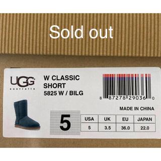 アグ(UGG)のugg 22(ブーツ)