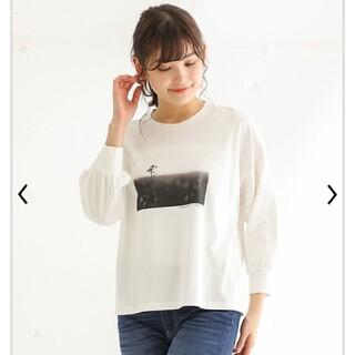 ハニーズ(HONEYS)のシャツ(Tシャツ(長袖/七分))