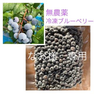 北海道産 無農薬 冷凍 ブルーベリー 2キロ(フルーツ)