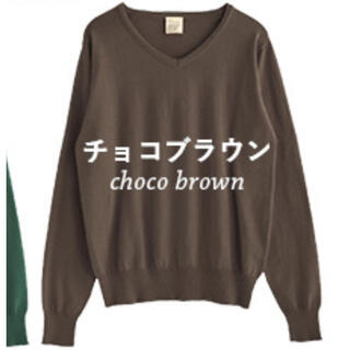 Zootie - 新品 ZOOTIE ウォッシャブルニット チョコブラウン L