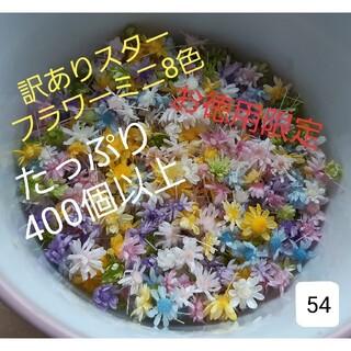 訳あり54スターフラワーミニ8色 100本+おまけ(ドライフラワー)