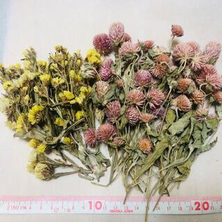 ドライフラワー 黄色い花とピンクの花(ドライフラワー)