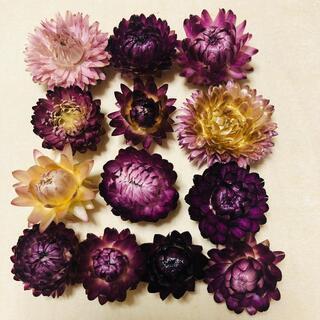 ドライフラワー☆紫のお花(ドライフラワー)