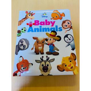 ディズニー(Disney)の*美品※ Disney Baby Animals 英語 絵本(絵本/児童書)