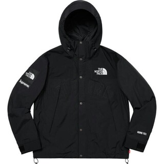 Supreme 19SS TNF Mountain Parka(マウンテンパーカー)