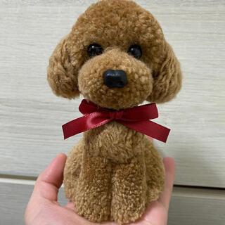 動物ぽんぽん トイプードル ヘーゼルブラウン(鼻ボタンタイプ)(その他)