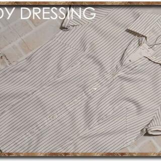 PROPORTION BODY DRESSING - ボディドレッシング ストライプブラウス オフホワイト☆やや難
