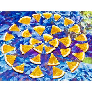 お花屋さんが作ったオレンジのドライチップ30個です‼️(各種パーツ)