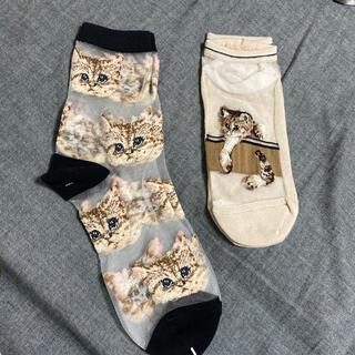 PAUL & JOE - 2セット 【新品 未使用】 PAUL&JOE  靴下 ソックス くるぶし 猫